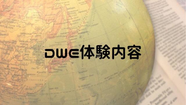 DWE体験内容