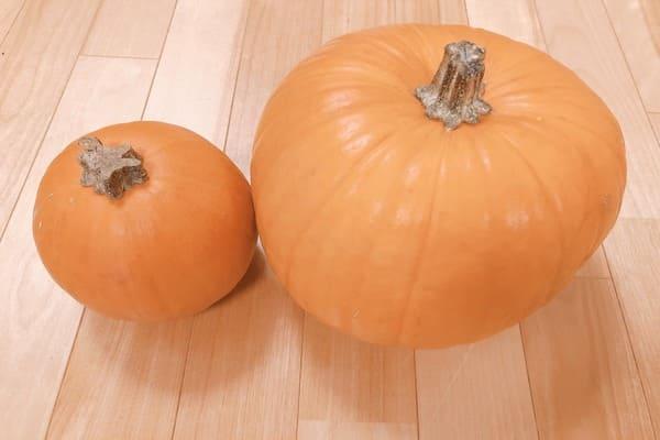 ジャックオーランタンのかぼちゃ